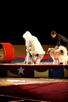 Second Half of Circus Acts on Thursday February 19, 2015